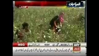 How India is Destroying Pakistani Economy | Short Film By Porki Media