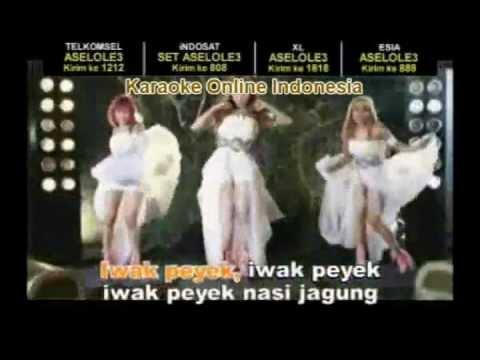IWAK PEYEK - Trio Macan (Karaoke) Mp3