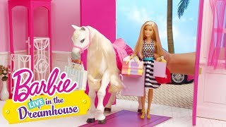 Girls Day Out | Barbie LIVE! In the Dreamhouse | Barbie