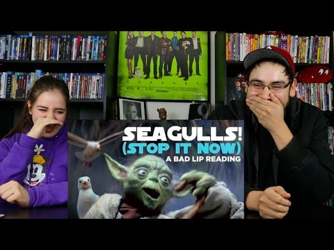 Download SEAGULLS! (Stop It Now) A Bad Lip Reading REACTION / REVIEW