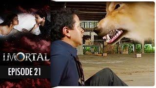 Imortal - Episode 21