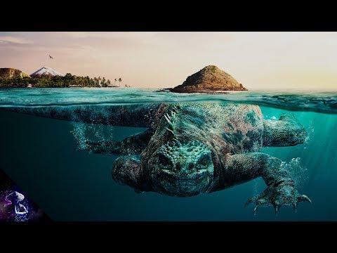 Xxx Mp4 5 सबसे रहस्यमय समुद्री जीव TOP 5 MYSTERIOUS SEA CREATURES HINDI 3gp Sex
