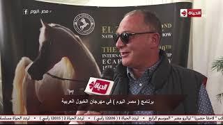 """مصر اليوم - برنامج """"مصر اليوم"""" في مهرجان الخيول العربية"""