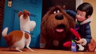 Pets - A Vida Secreta dos Bichos - Trailer Oficial 3 Dublado