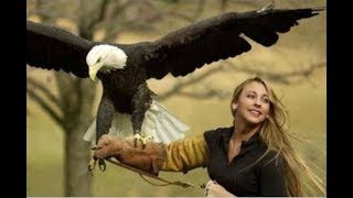 Connect two worlds►Pet Wild Animals►Tiger,Leopard,Jaguar,Crocodile,Eagle,Bear