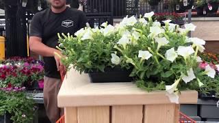 Easy DIY 2x4 Outdoor Planter Bench