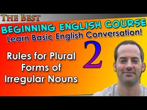 002 - Rules for Plural Forms of Irregular Nouns - Beginning English Lesson - Basic English Grammar