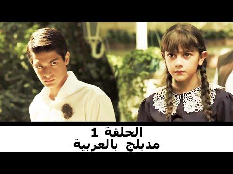 مدبلج بالعربية الحلقة 1 طائر النمنمة