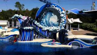 Blue Horizons Dolphin Show: Part 1