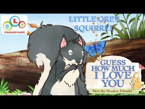 Guess How Much I Love You: Compilation - Little Grey Squirrel
