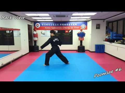 Xxx Mp4 Taekwondo Poomsae 6 Yook Jang Slow Motion Amp Mirror 3gp Sex