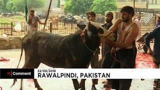 Les musulmans pakistanais célèbrent l