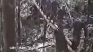 YouTube Mujahideen of Indonesia