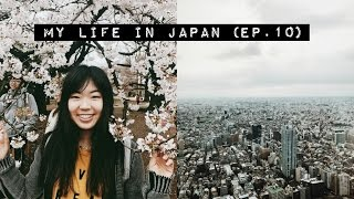 Getting Lost AF + Cherry Blossom Viewing! 🌸🏙 | Japan Vlog (Ep.10)
