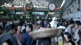 New Cool  Halls Polar Bear Ad