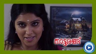 New Malayalam Movie 2014 - Nattarangu - Part 19 Out Of 21 [HD]