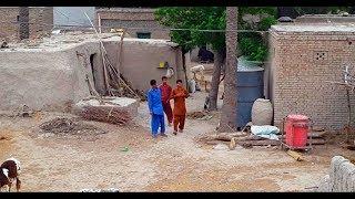 Natural Punjabi Village Life In Pakistan