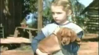 YouTube - Walt Disney's Song Of The South Part 4