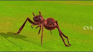Itsy bitsy spider   Incy wincy spider - 3D Animation English Nursery rhyme song for children