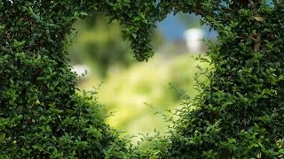 Amazing Beauatiful Hand-Picked Love Hearts images, Pics, Photoes, Wallpapers For Whatsapp, Facebook