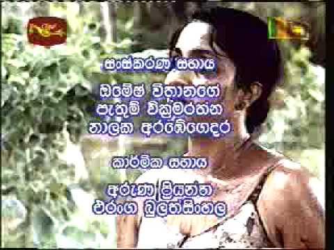 Ambu Daruwo  theme song