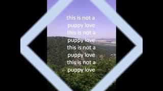 Donny Osmond - Puppy love - My cover-version (with lyrics)