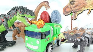 Dinosaur Lays Eggs! Learn Names of Dinosaurs With Tayo Max~Unexpected Accident Dino Toys Story!