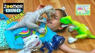 COOL JURASSIC WORLD INDOMINUS REX ATTACKS LITTLE GIRL Toy Chomplingz Zoomer Boomer JW Surprise Toys
