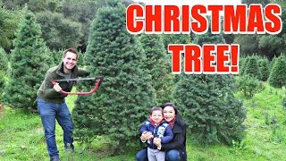 CUTTING DOWN OUR FIRST CHRISTMAS TREE!