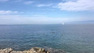 Croatia -Mali Losijn island - swimming naked