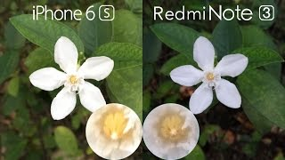Redmi Note 3 vs iPhone 6s Comparison, Speed test, Camera Review