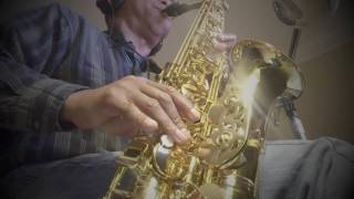 Will To Power - Baby, I Love Your Way / Free bird  - (Sax Cover)