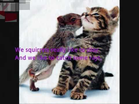 Squirrels! and Lyrics