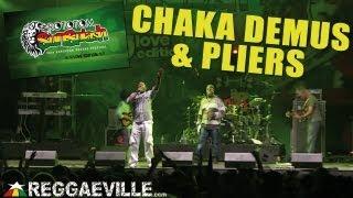 Chaka Demus & Pliers - Tease Me @Rototom Sunsplash 2013 [August 17th]