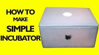 homemade incubator for chicken eggs    How to Make an Egg Incubator