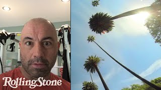 Joe Rogan: A Day (or So) in the Life of UFC's Funniest Guy
