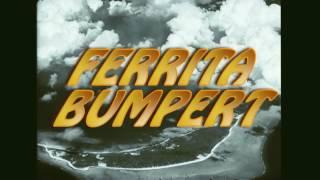 VILLIAM BOOM - FERRITA BUMPERT