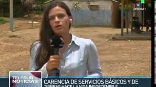 5986 economics agriculture TeleSUR Colombia monocultivo de palma hace peligrar comunidades de campes