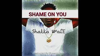 Shatta Wale - Shame On You (Audio Slide)