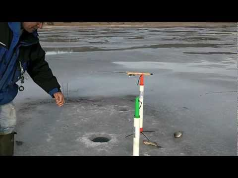 Tip Down Ice Fishing Crappies