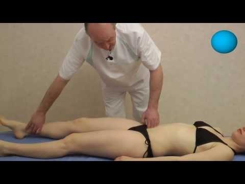 Atlas elementaire anatomie video downloader