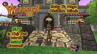 Wizard101 Baby To Mega Obsidian Mimic - Is This Pet Worth 3500 Crowns?!