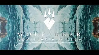 Wolf & Bear - Armillaria Mellea
