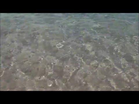 Barceloneta Nudist Beach