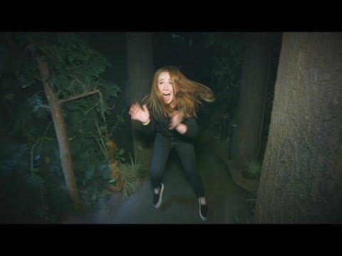 Xxx Mp4 Ellen39s Employee Mackenzie Kicks Her Way Through A Haunted House 3gp Sex