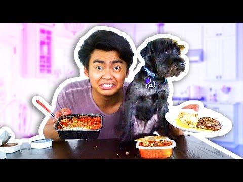 DOG FOOD VS HUMAN FOOD!