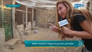 صبايا الخير - ريهام سعيد من داخل اخطر مزرعة للاسود والنمور المتوحشة المفترسة  بالعياط  +18
