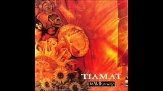 Tiamat - Visionaire