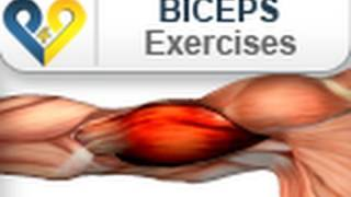 Biceps Exercises: Barbell Curls