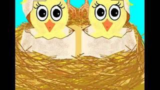 Birthday Animation - Cute birds sing Happy Birthday